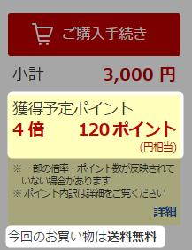 楽天カード3000円